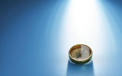 Vision, Mission And Micromanagement